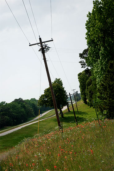 Photo of power lines along a country road on a sunny day